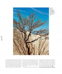 Shiprock Gallery - October 2014 Shiprock Santa Fe in Du Jour Magazine